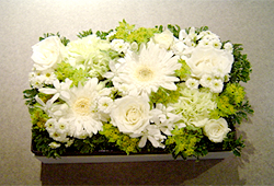 Box Flower (ボックスフラワー)